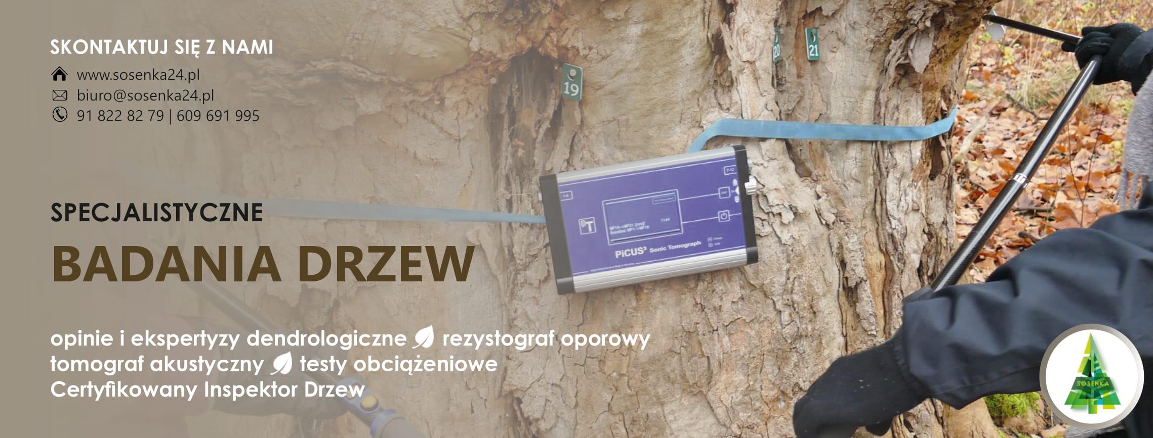 SPecjalistyczne badania drzew