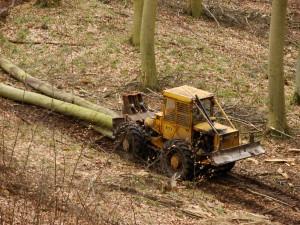 16.Pozyskanie drewna
